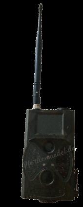 Pferdeüberwachung - Kamera