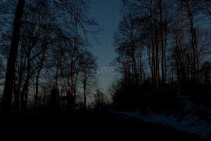 Pferd bei Dunkelheit ohne Beleuchtung