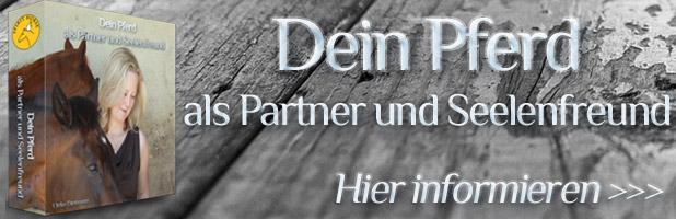 Partner Pferd: Dein Pferd als Partner und Seelenfreund